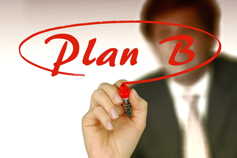 Businessplan, Plan B